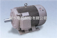 CXT系列稀土永磁三相同步电动机