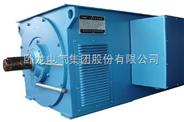 Y系列大中型高壓三相異步電動機