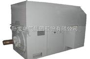 Y系列低压大功率三相异步电动机