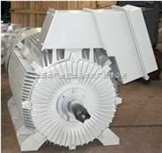 UBPJ系列为全封闭紧凑型低压变频电动机