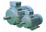 Y2、Y3系列及IEC高效三相异步电动机