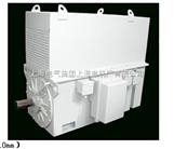 高压10kV 三相异步电动机(H400~710mm)