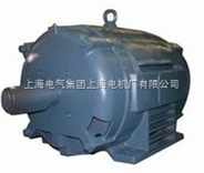 ODP高效整马力三相异步电动机