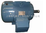 TEFC高效整马力三相异步电动机